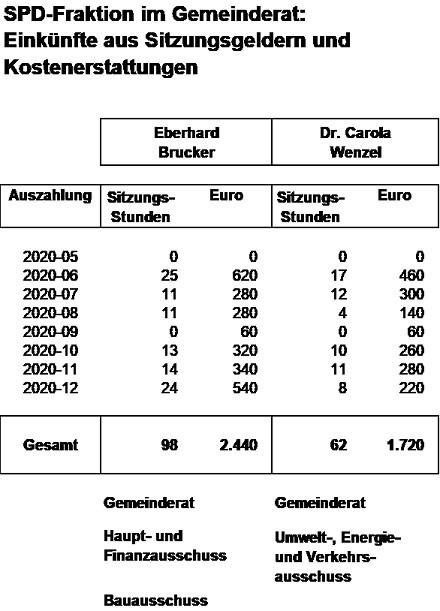 SPD-Fraktion im Gemeinderat - Einkünfte 2020-12 75